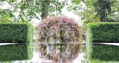 Large plantings by Enea Landscape Architecture