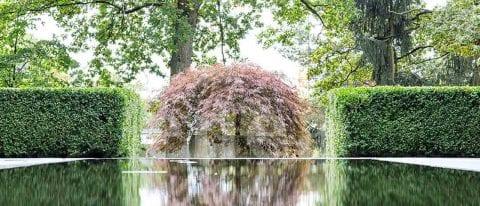 Enea's Landscape Design is part of the Development Team at The Residences at The St. Regis Longboat Key