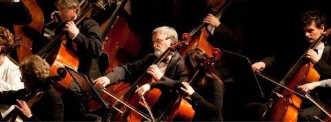 Sarasota Orchestra cello section