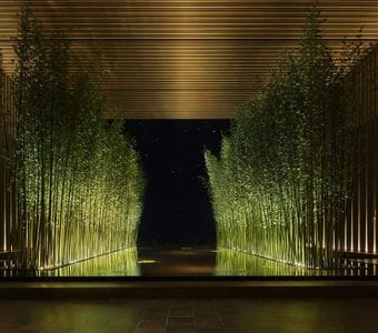 Lighted water and bamboo stalks at The Residences at The St. Regis Longboat Keyr and greenery at the entrance of